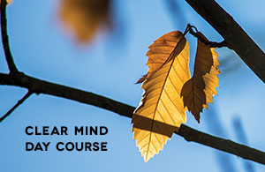 Clear Mind Day Course